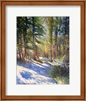 Snow Fine-Art Print