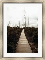 Devastation Trail Fine-Art Print