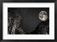 Full Moon Fine-Art Print
