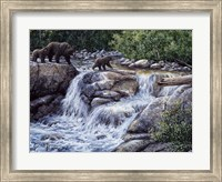 Entiat Falls-Grizzly Family Fine-Art Print
