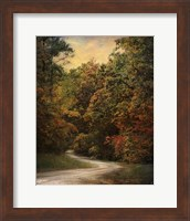 Autumn Forest 1 Fine-Art Print