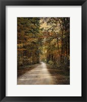 Autumn Forest 3 Fine-Art Print