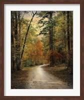 Autumn Forest 4 Fine-Art Print