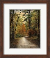 Autumn Forest 4 Fine-Art Print