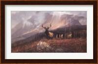 Bookcliffs Elk II Fine-Art Print