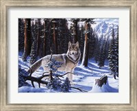 Big Timber Fine-Art Print