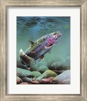 Rainbow Fine-Art Print