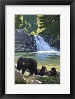 Black Bear with Cubs 3 Fine-Art Print