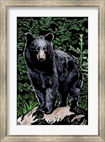Black Bear 4 Fine-Art Print