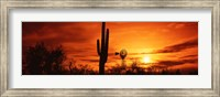 Sonoran Desert Sunset, Arizona Fine-Art Print