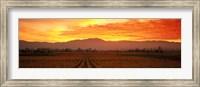 Sunset over Napa Valley Fine-Art Print