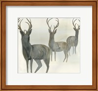 Deer Trio Fine-Art Print
