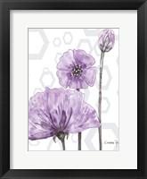 Poppy Arch Rect 1 Fine-Art Print