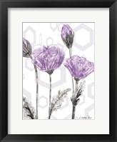 Poppy Arch Rect 2 Fine-Art Print