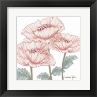 Pink Poppies 2 Fine-Art Print