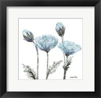 Poppy Perched  1 Fine-Art Print