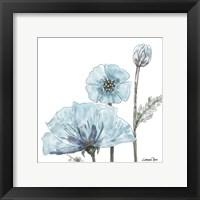 Poppy Perched 2 Fine-Art Print
