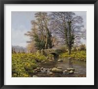 Daffodil Bridge Fine-Art Print
