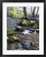 Shallow Brook Fine-Art Print