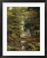 Woodland In The Fall Fine-Art Print