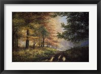Fall In The Pines Fine-Art Print