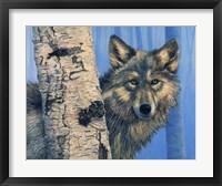 Birch Wolf Fine-Art Print