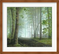 Misty Morning Visitor Fine-Art Print