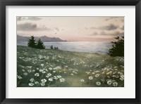 Sunlight Fine-Art Print