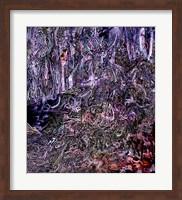 Midnight Campsite Fine-Art Print