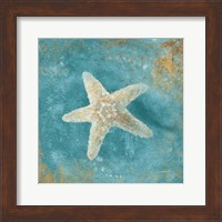 Treasures from the Sea IV Aqua Fine-Art Print