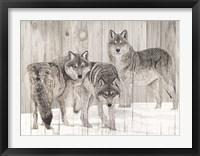 Three Grey Wolves on Wood Fine-Art Print