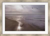 Beach Flight Fine-Art Print