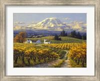Autumn Vineyards Fine-Art Print