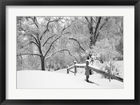 Snowscape, Farmington Hills, Michigan 08 Fine-Art Print