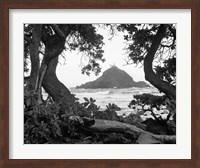 Long Hanna Drive, Maui, Hawaii 00 Fine-Art Print
