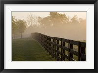 Morning Mist & Fence, Kentucky 08 Fine-Art Print