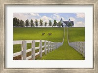 Manchester Farm, Kentucky 08 Fine-Art Print