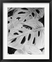 Philodendron, Michigan 86 Fine-Art Print
