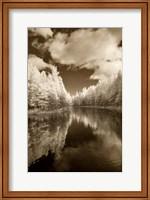 Mirror Of Heaven, Palms Book State Park, Michigan 12 Fine-Art Print