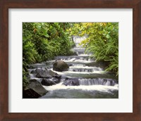 Terraced Falls Fine-Art Print