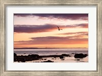 Flying At Sunrise, Sault St. Marie, Michigan 12 Fine-Art Print
