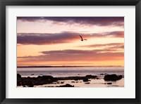 Flying At Sunrise, Sault St. Marie, Michigan 12 Fine-Art Print