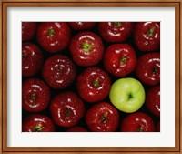 Apples #3 Fine-Art Print