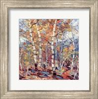 Birch Colors I Fine-Art Print