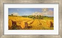 Campo in Toscana Fine-Art Print