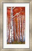 Betulle III Fine-Art Print