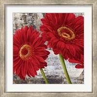 Red Gerberas I Fine-Art Print