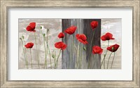 Country Poppies Fine-Art Print