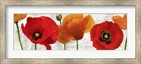Summer Poppies Fine-Art Print