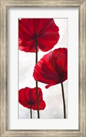 Reds III Fine-Art Print